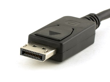 Picture for category DisplayPort Cables