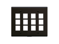 Picture of Faceplate Flat 2-gang 12 Port Black