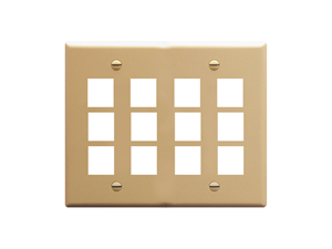 Picture of Faceplate Flat 2-gang 12-port Ivory